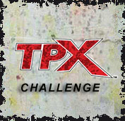 Tippmann TPX Challenge at D-Day